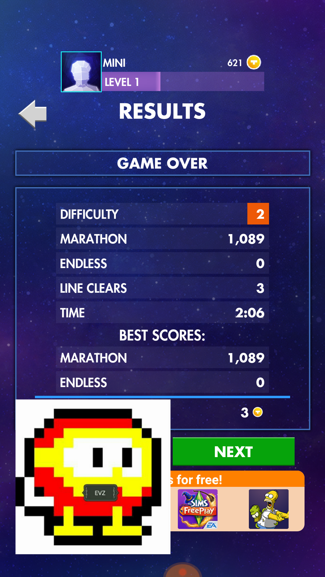 Tetris 1,089 points