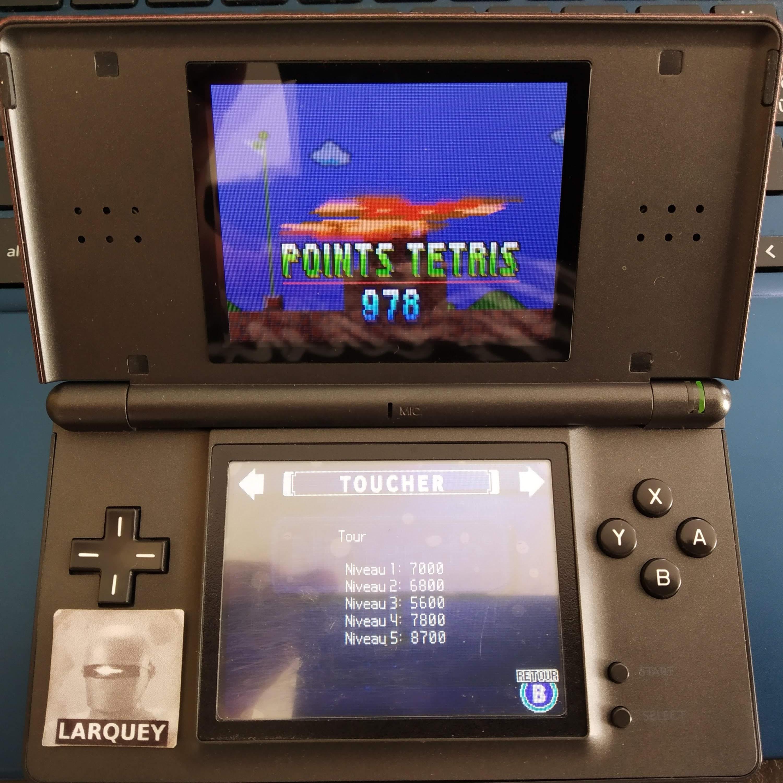 Larquey: Tetris DS: Touch [Level 1] (Nintendo DS) 7,000 points on 2020-09-20 06:33:36