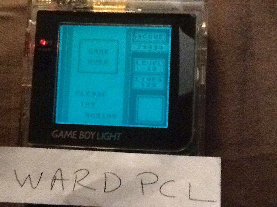 Wardpcl: Tetris [Lines] (Game Boy) 123 points on 2015-08-14 16:48:33