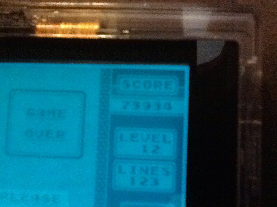 Tetris [Points] 73,934 points