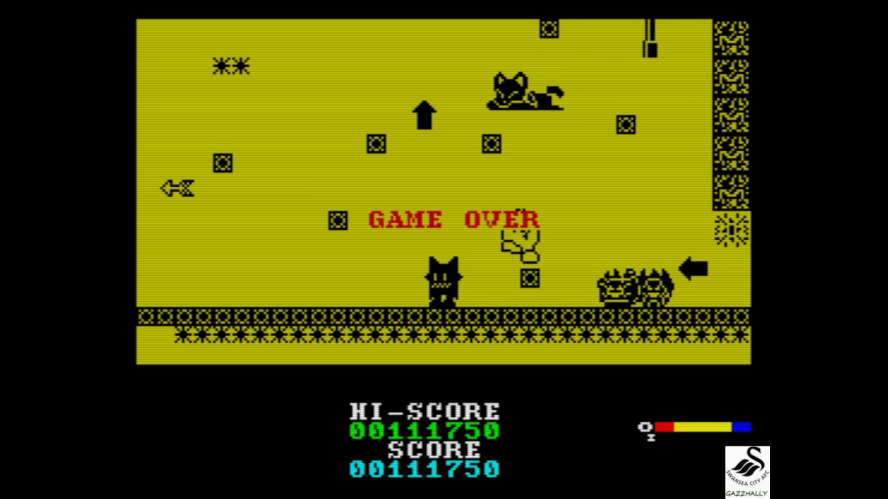 gazzhally: The New Zealand Story [1,000,000 Points Completion Bonus] (ZX Spectrum Emulated) 111,750 points on 2017-07-09 18:47:42