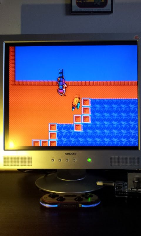 Larquey: The New Zealand Story (Sega Master System Emulated) 38,450 points on 2017-03-12 07:25:07