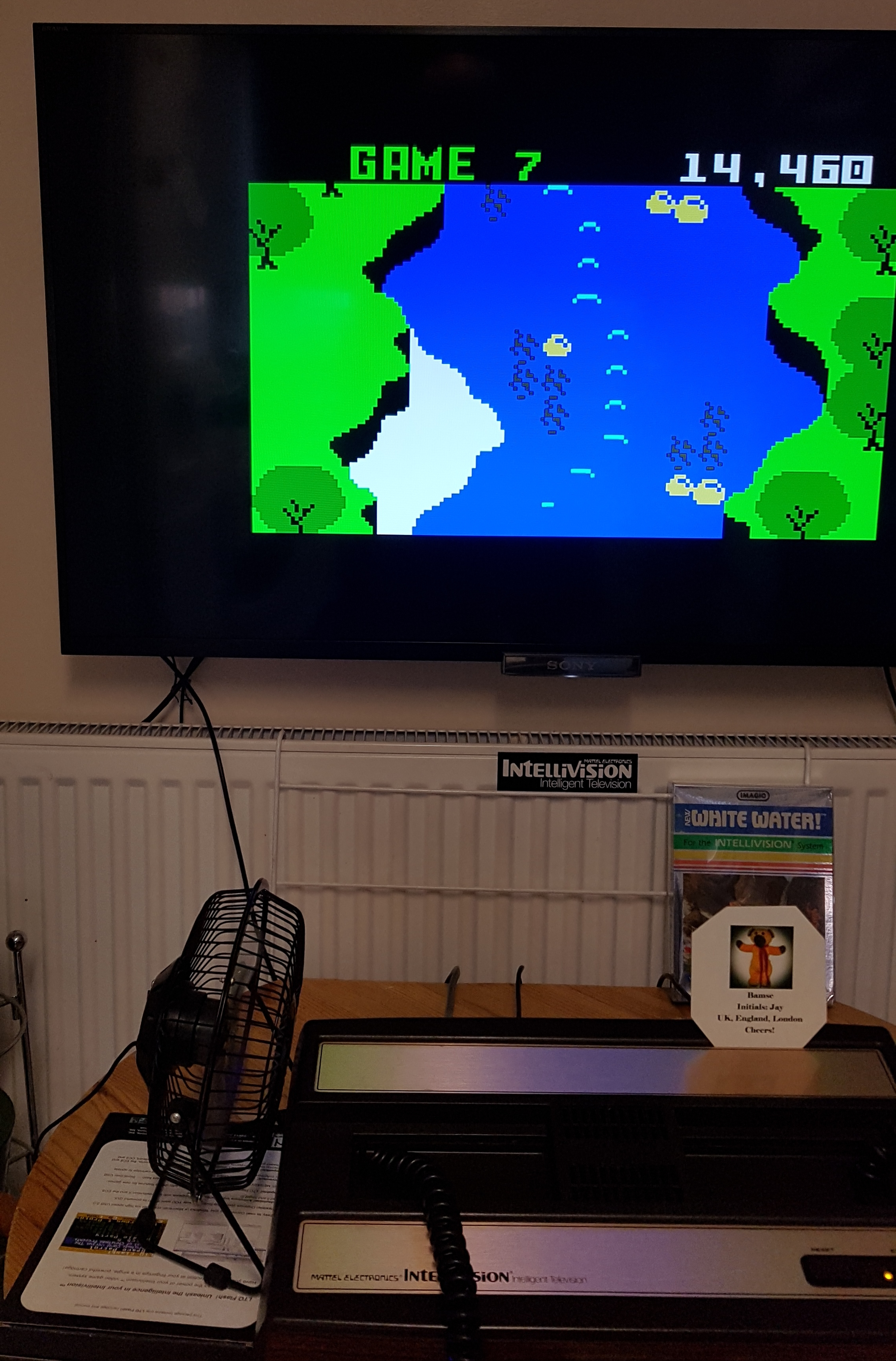 Bamse: White Water (Intellivision) 14,460 points on 2019-01-21 08:15:52