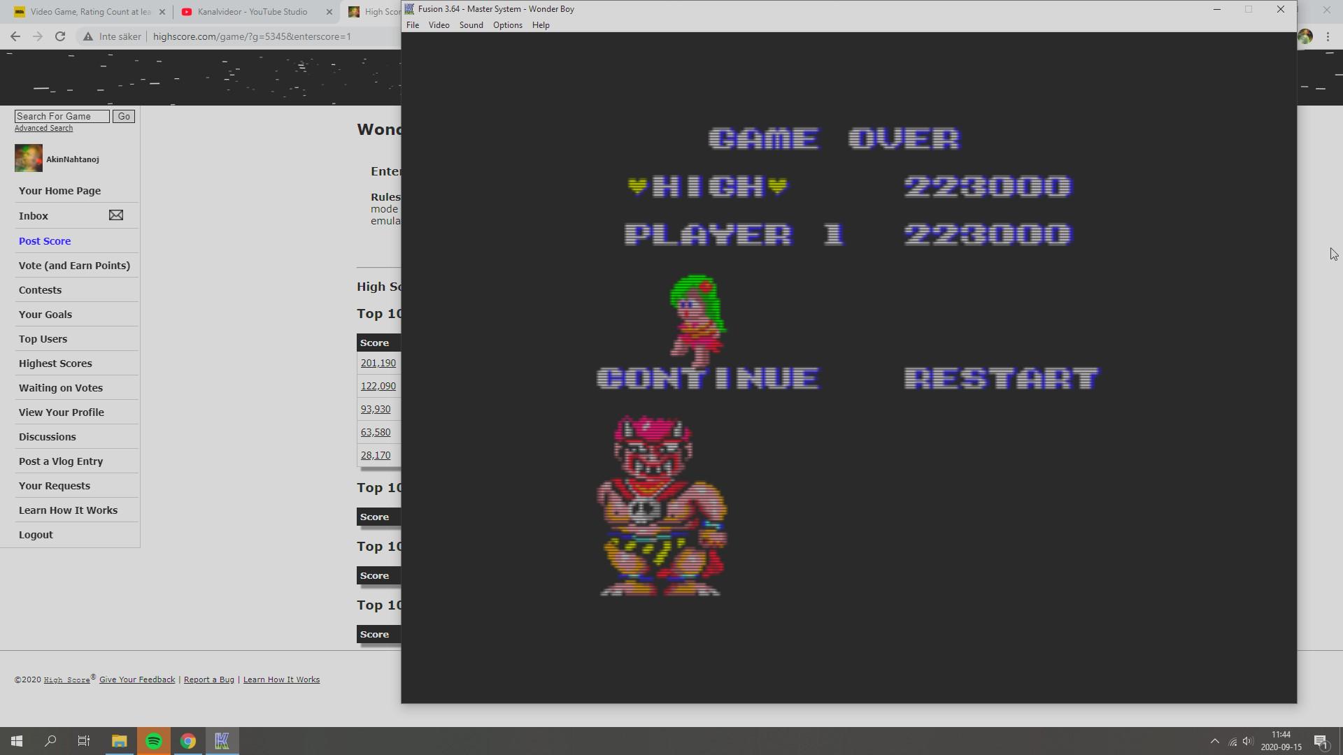 AkinNahtanoj: Wonder Boy (Sega Master System Emulated) 223,000 points on 2020-09-15 11:21:37
