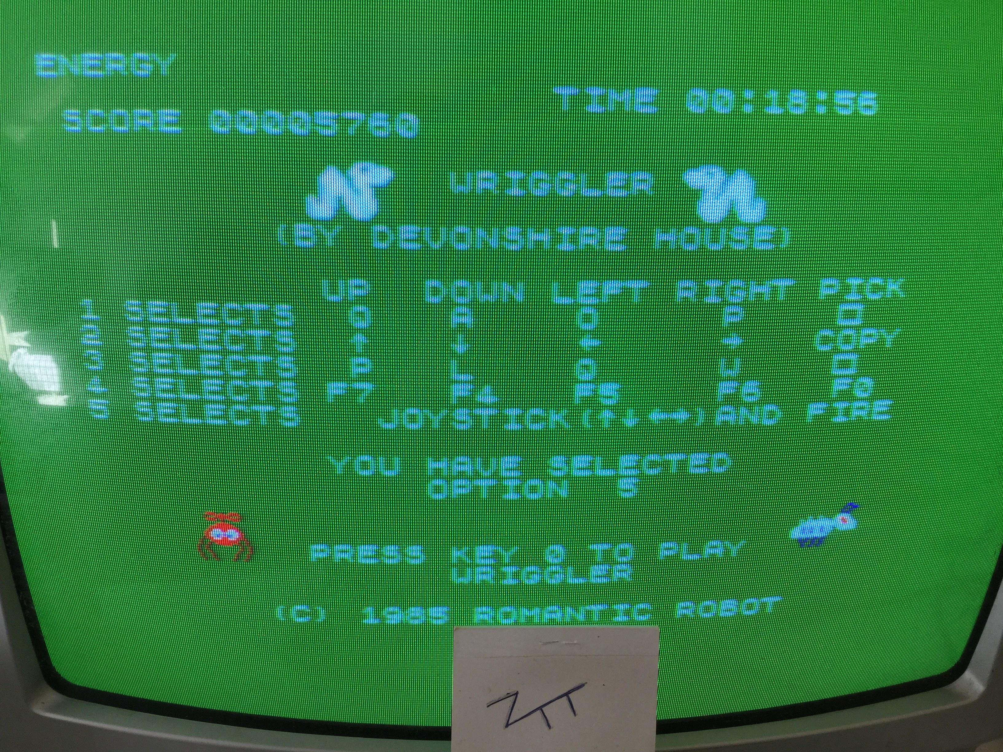 Frankie: Wriggler (Amstrad CPC) 5,760 points on 2017-04-09 02:52:07