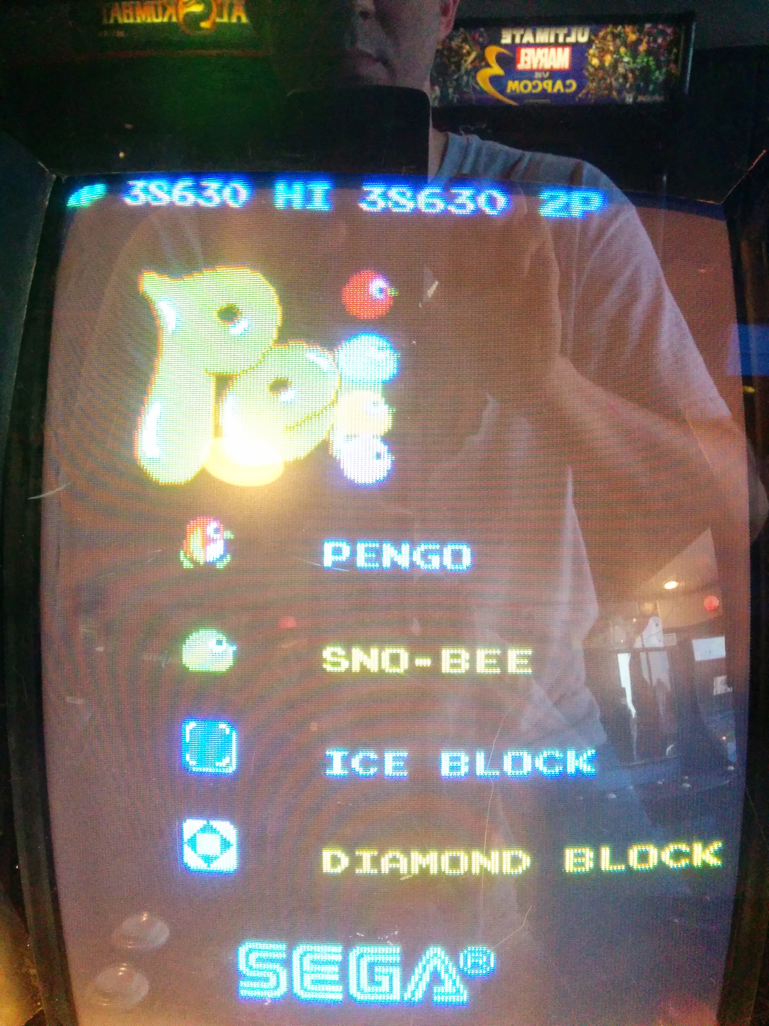 jlatko: Pengo (Arcade) 38,630 points on 2014-06-17 07:42:30