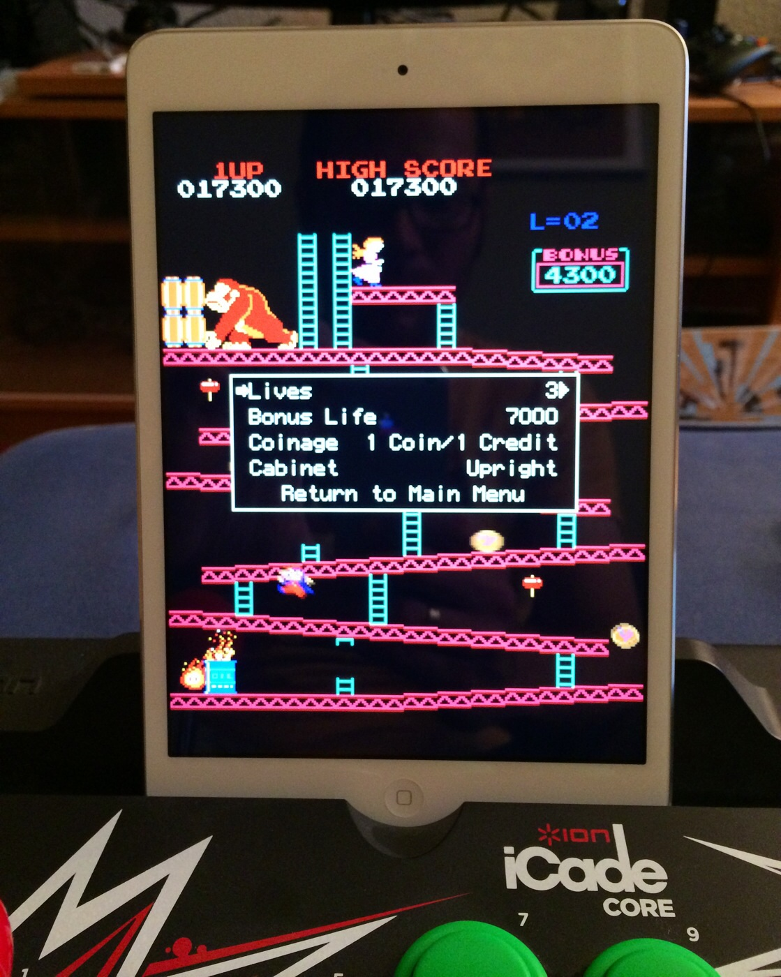 Donkey Kong 17,300 points
