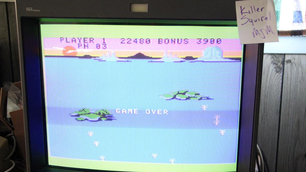 killersquirel: Slither (Colecovision) 22,480 points on 2013-09-30 23:44:10