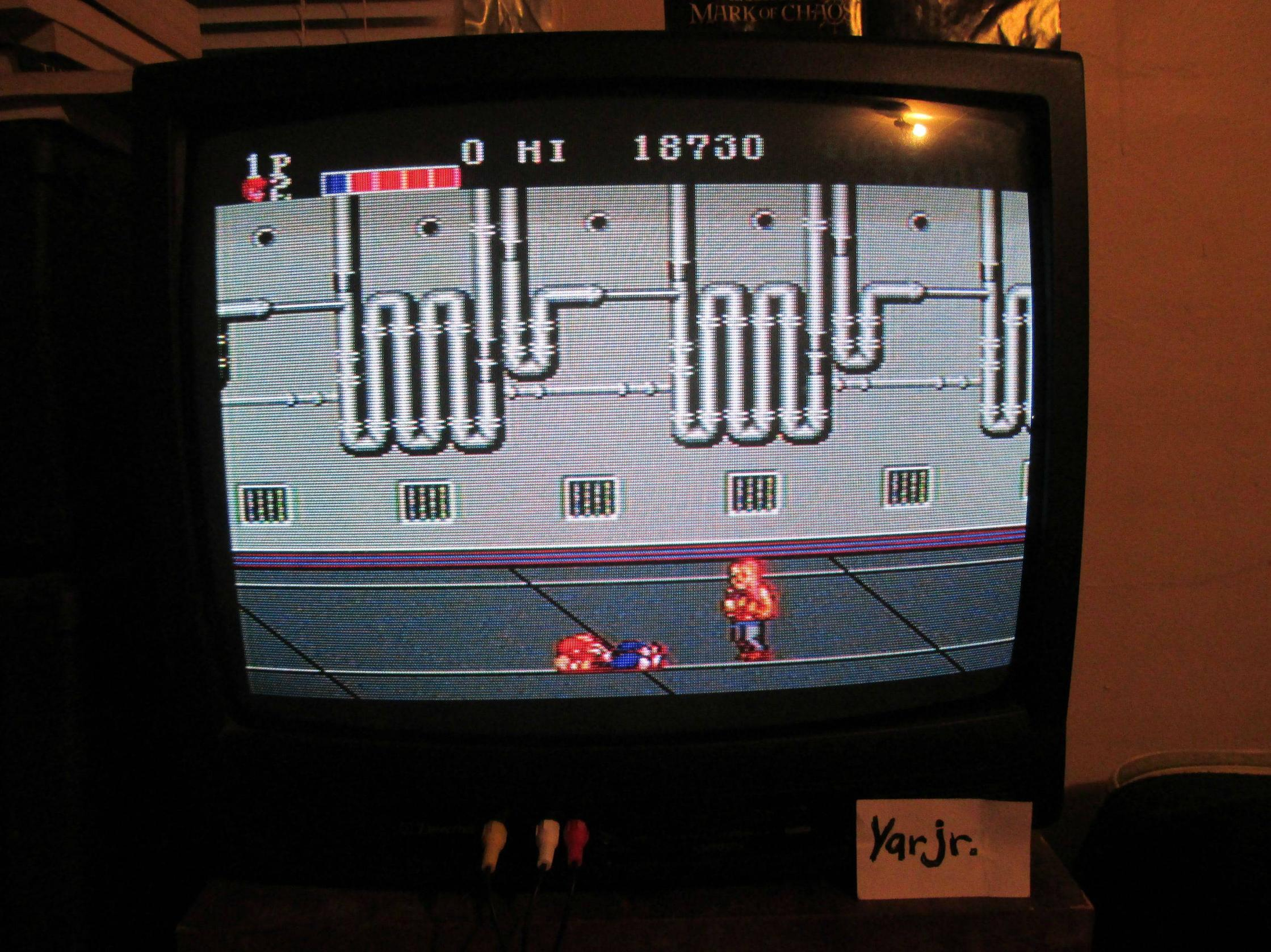 yarjr: Double Dragon (Sega Master System) 18,730 points on 2013-09-03 22:43:02