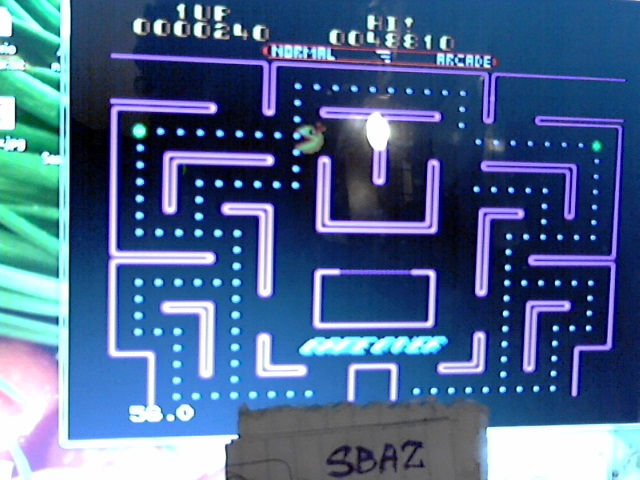 Ms. Pac-Man 48,810 points
