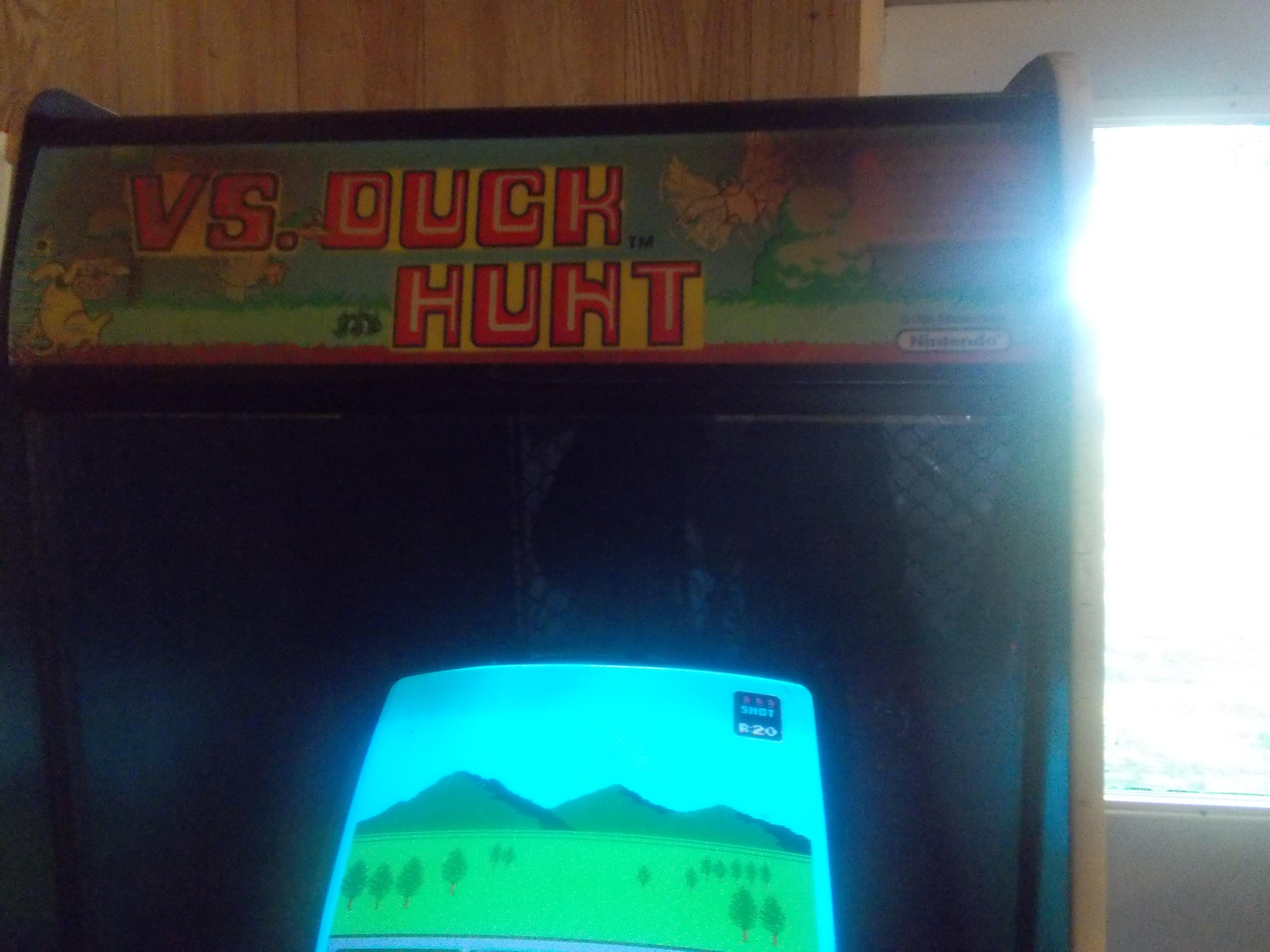 vs. Duck Hunt 16,000 points