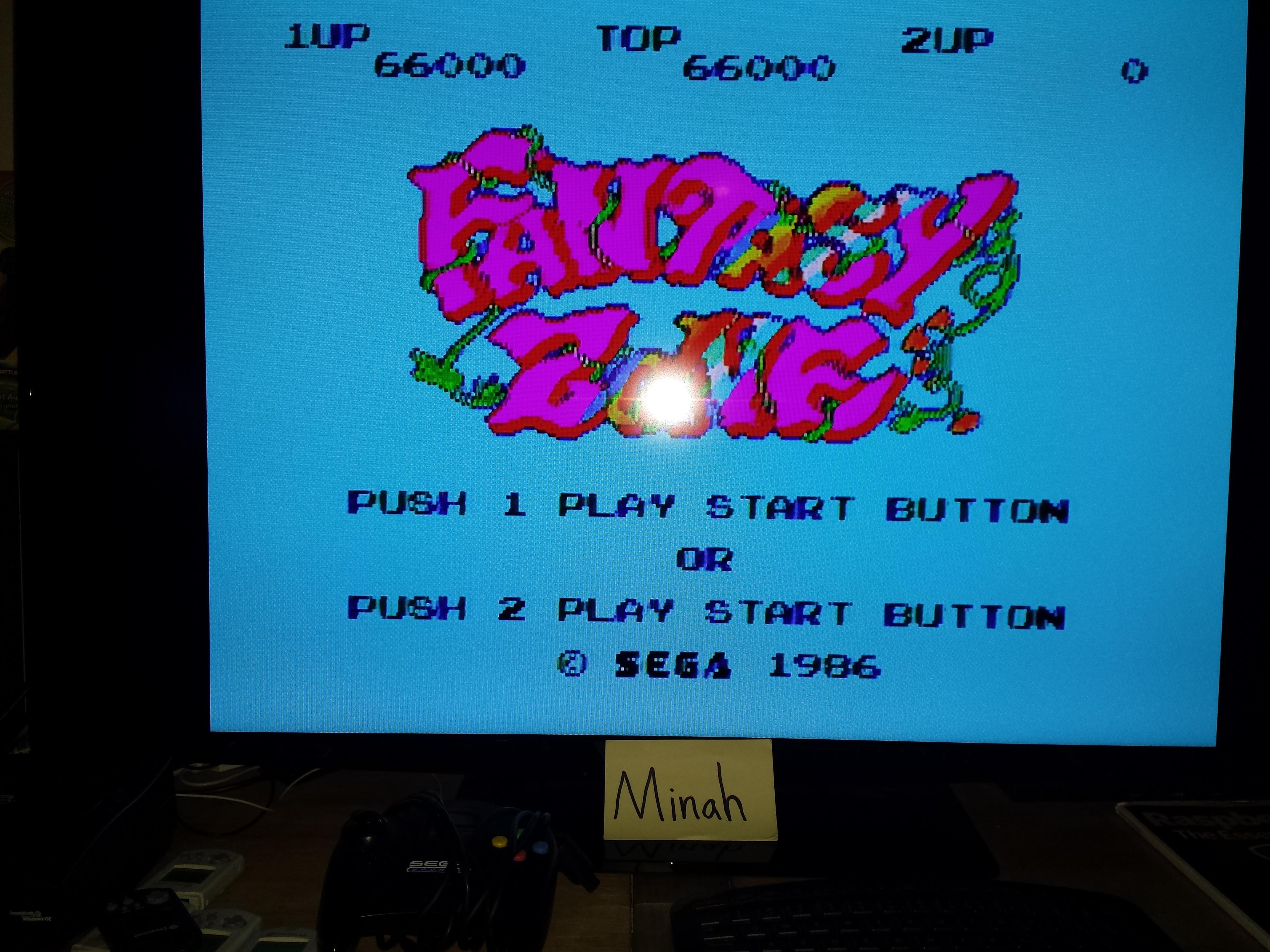 Fantasy Zone 66,000 points