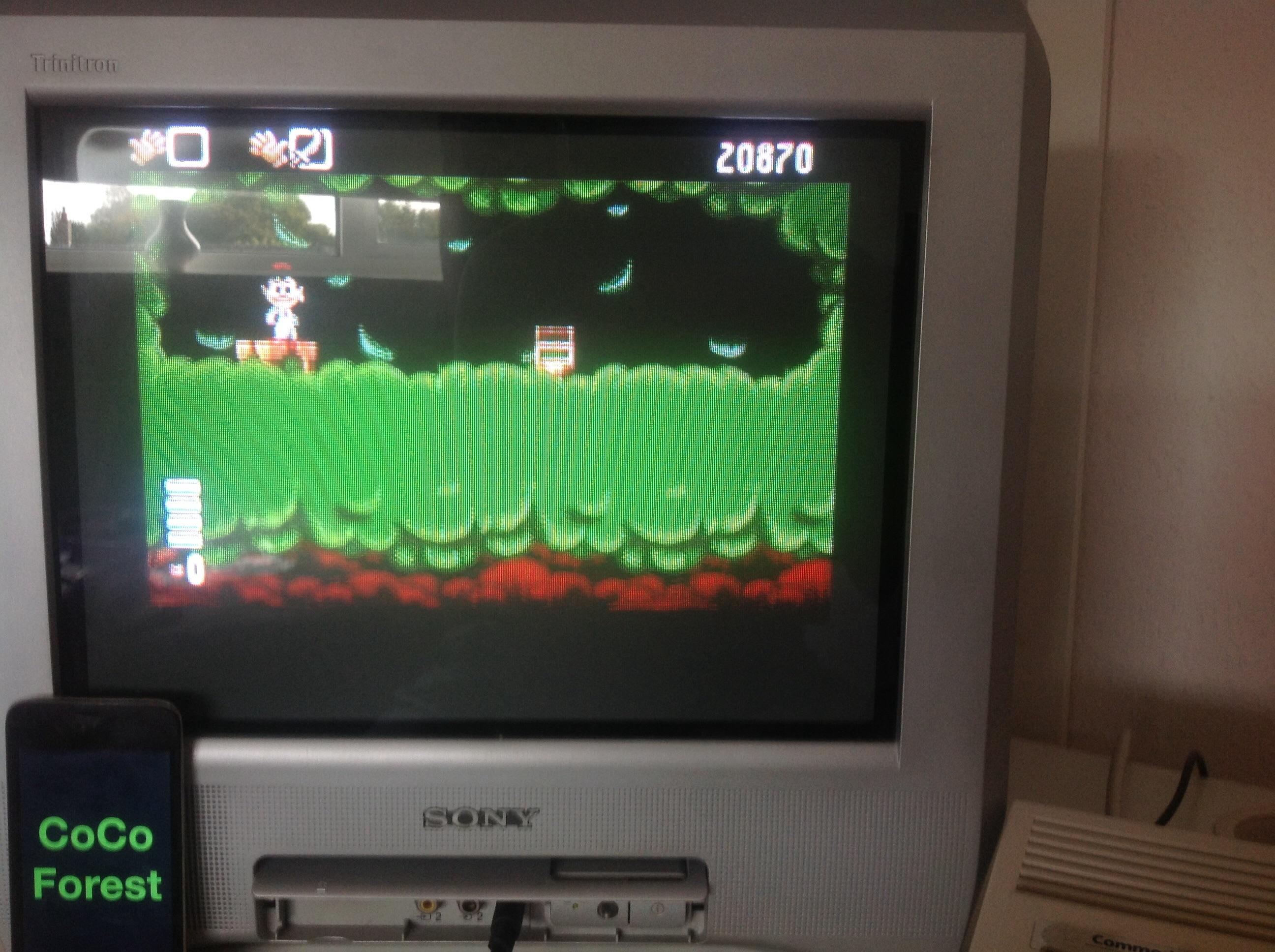 CoCoForest: Arabian Nights (Amiga) 20,870 points on 2014-09-28 07:55:14
