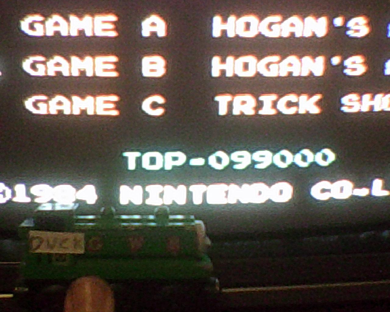 DuckGWR: Hogan