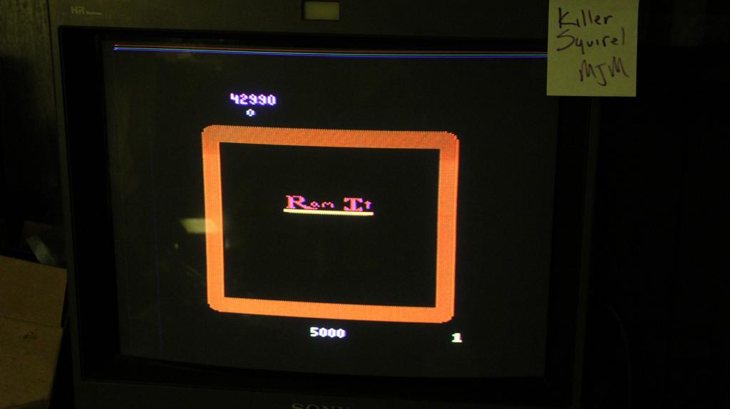 killersquirel: Ram It (Atari 2600 Expert/A) 42,990 points on 2013-10-17 00:13:07