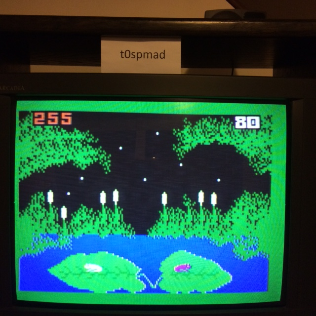 Frog Bog [Dir. & Tongue] 255 points