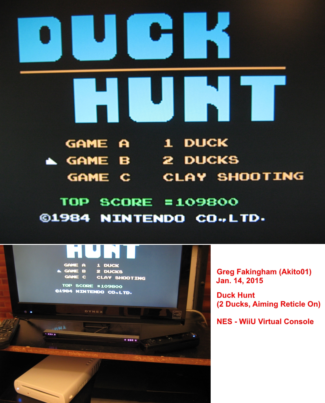 Akito01: Duck Hunt [Two Ducks, Aiming Reticle On] (Wii U) 109,800 points on 2015-01-22 15:41:13