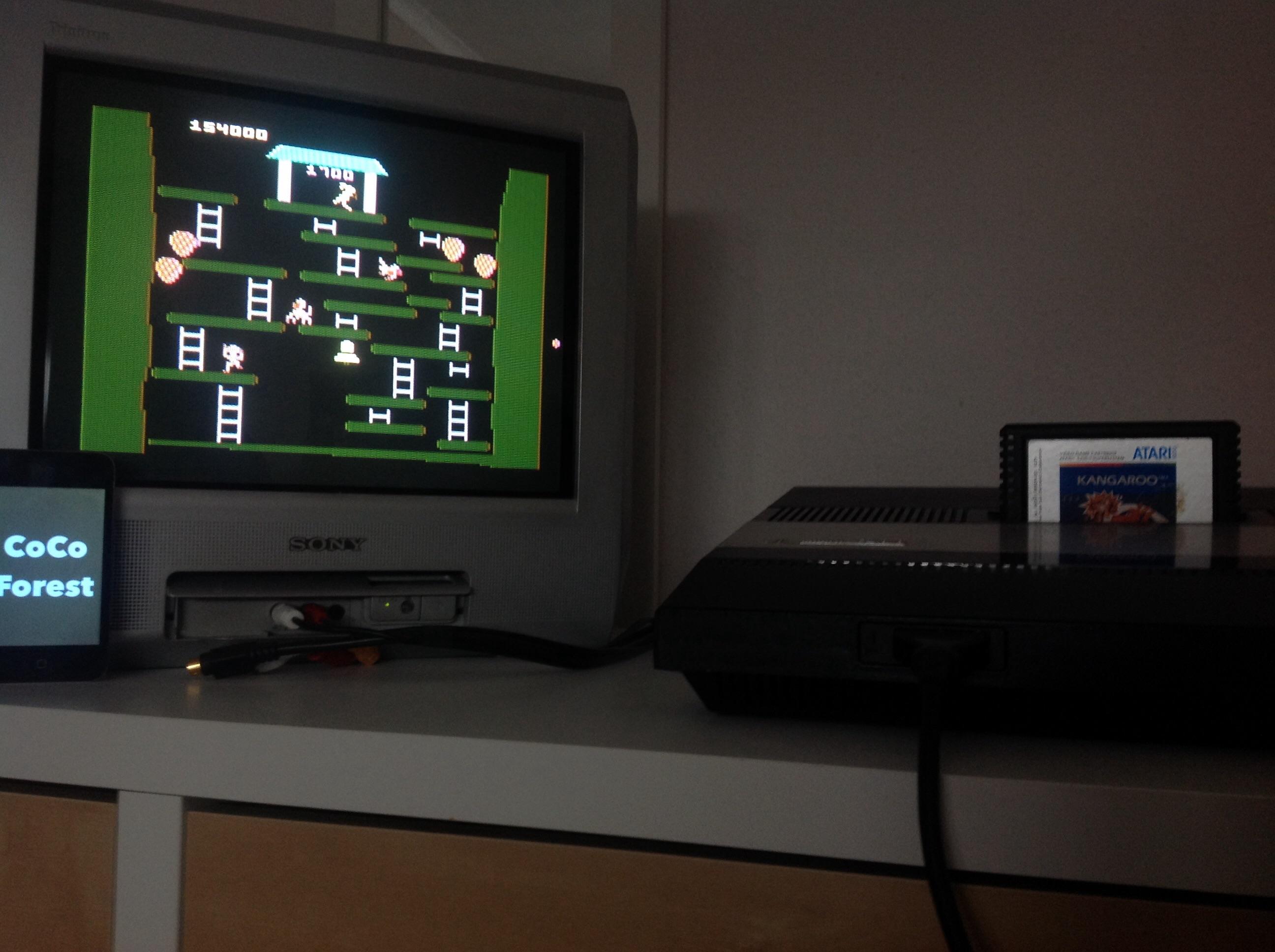 CoCoForest: Kangaroo: Novice (Atari 5200) 154,000 points on 2015-02-07 05:56:59