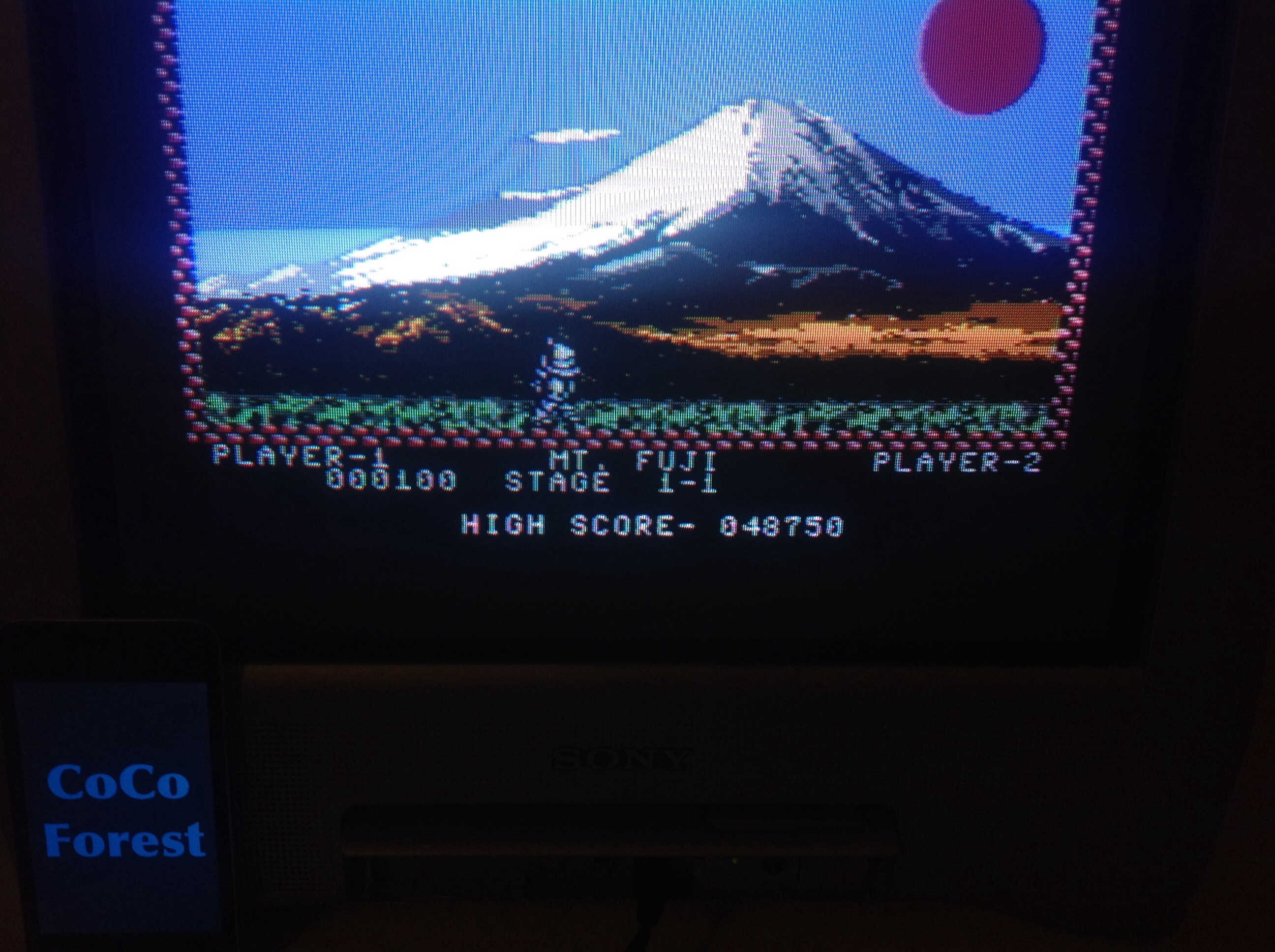 CoCoForest: Pang (Commodore 64) 48,750 points on 2015-03-13 14:42:33