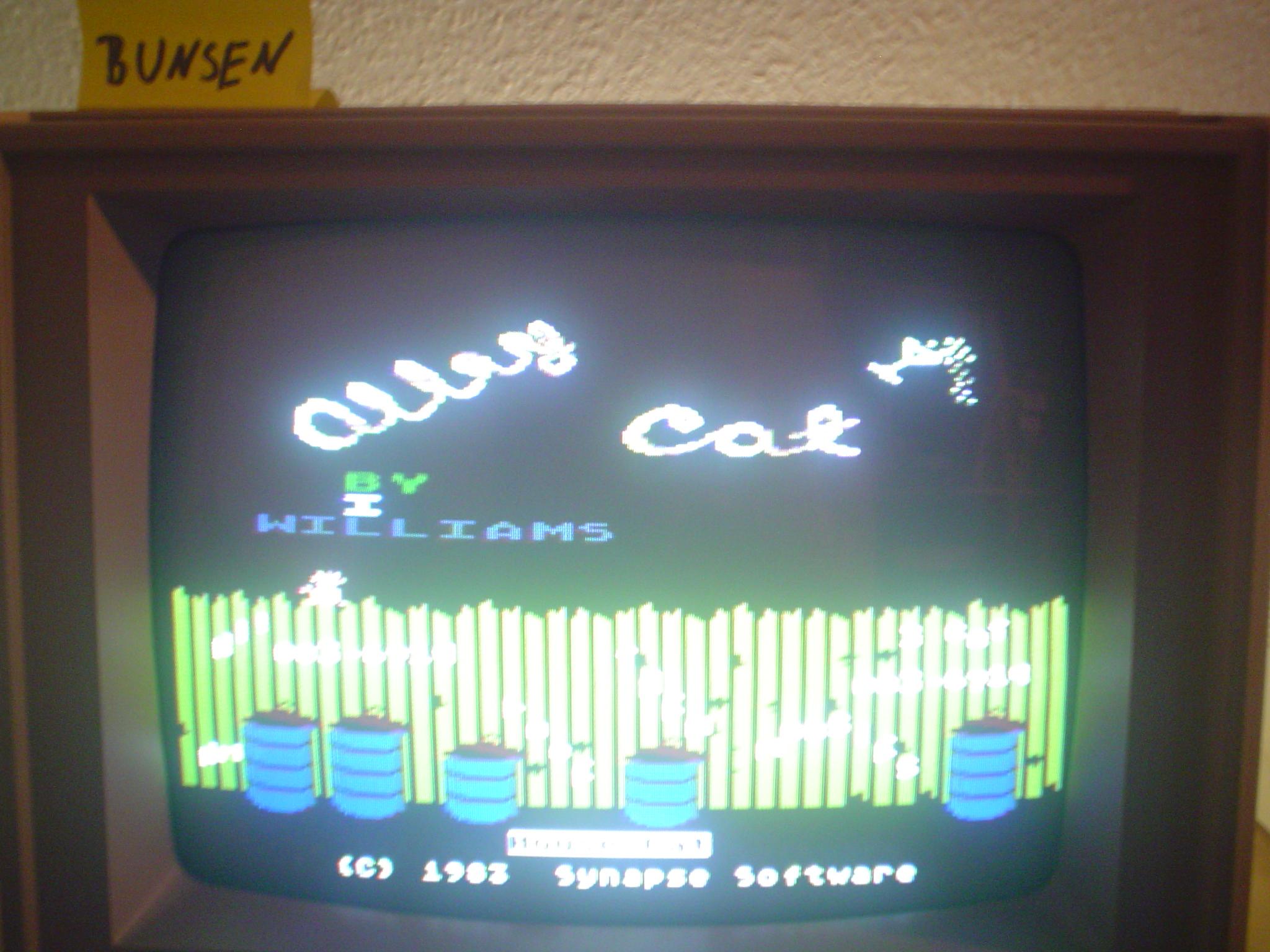 Bunsen: Alley Cat (Atari 400/800/XL/XE) 36,714 points on 2015-03-21 10:11:58