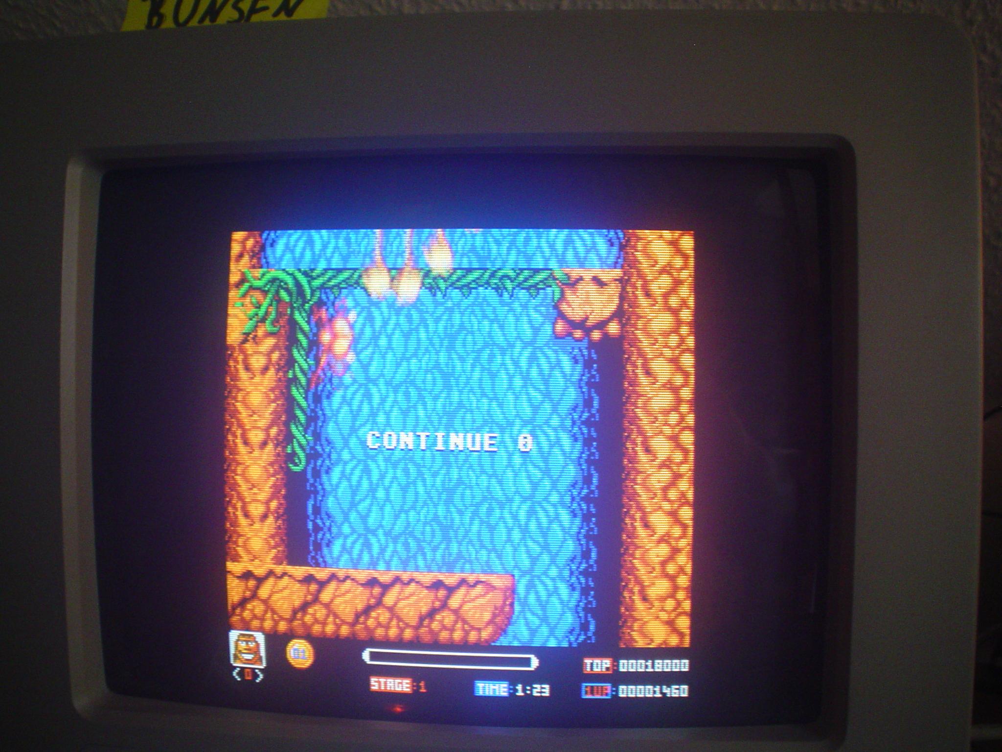 Bunsen: Toki (Atari ST) 1,460 points on 2015-04-18 08:53:41