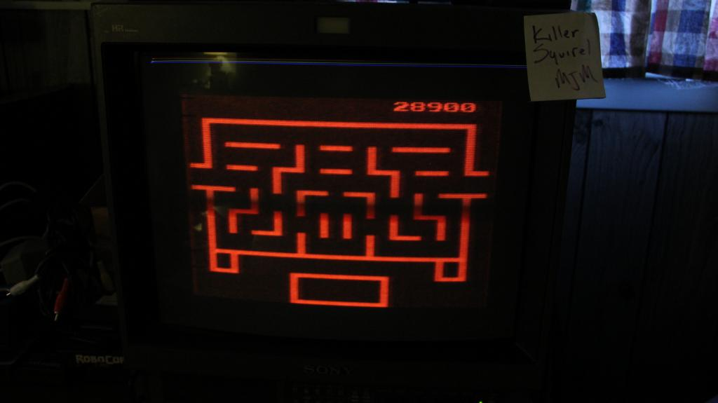 killersquirel: Wizard of Wor (Atari 2600 Expert/A) 28,900 points on 2013-10-29 07:47:44