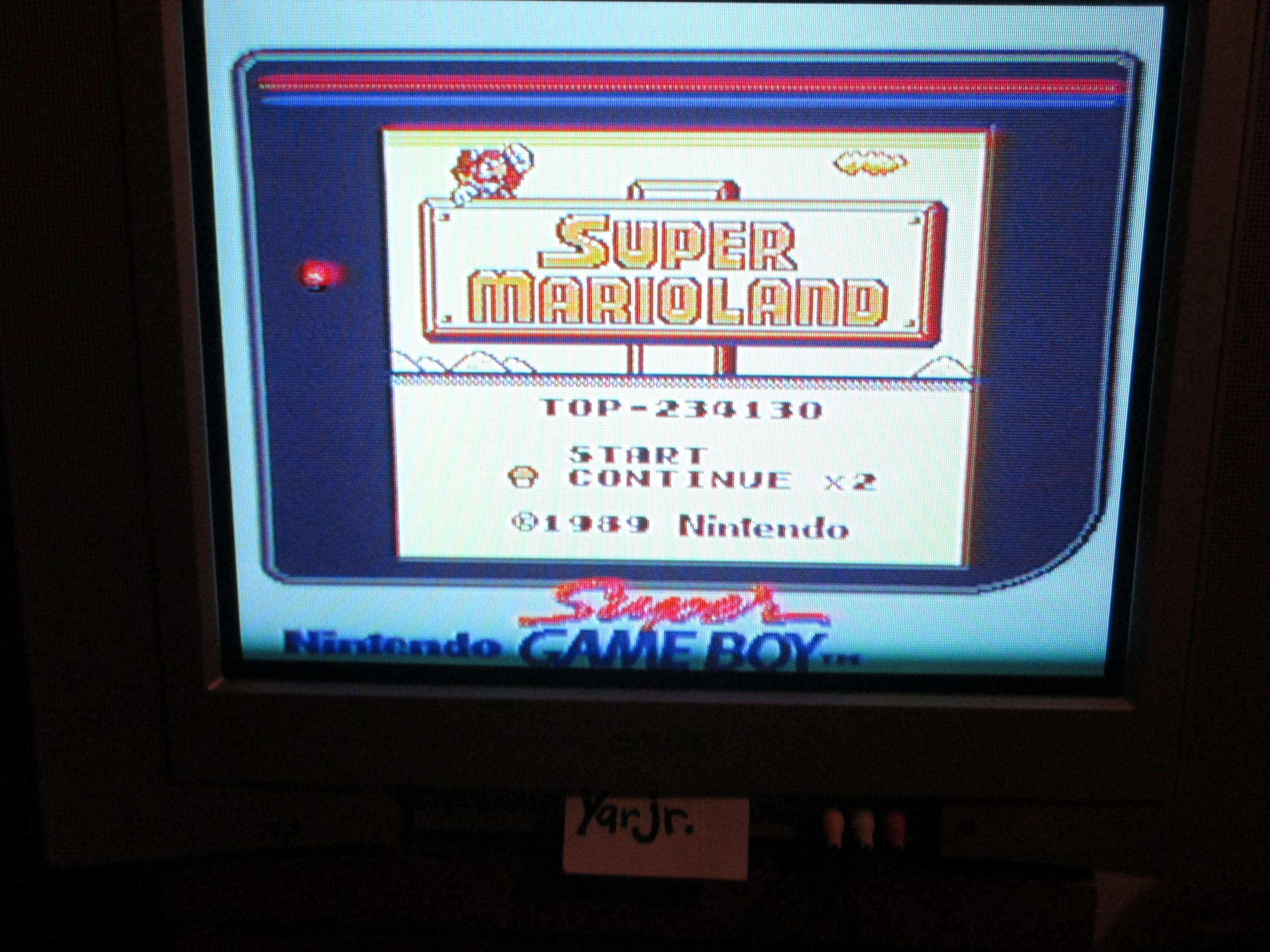 Super Mario Land 234,130 points