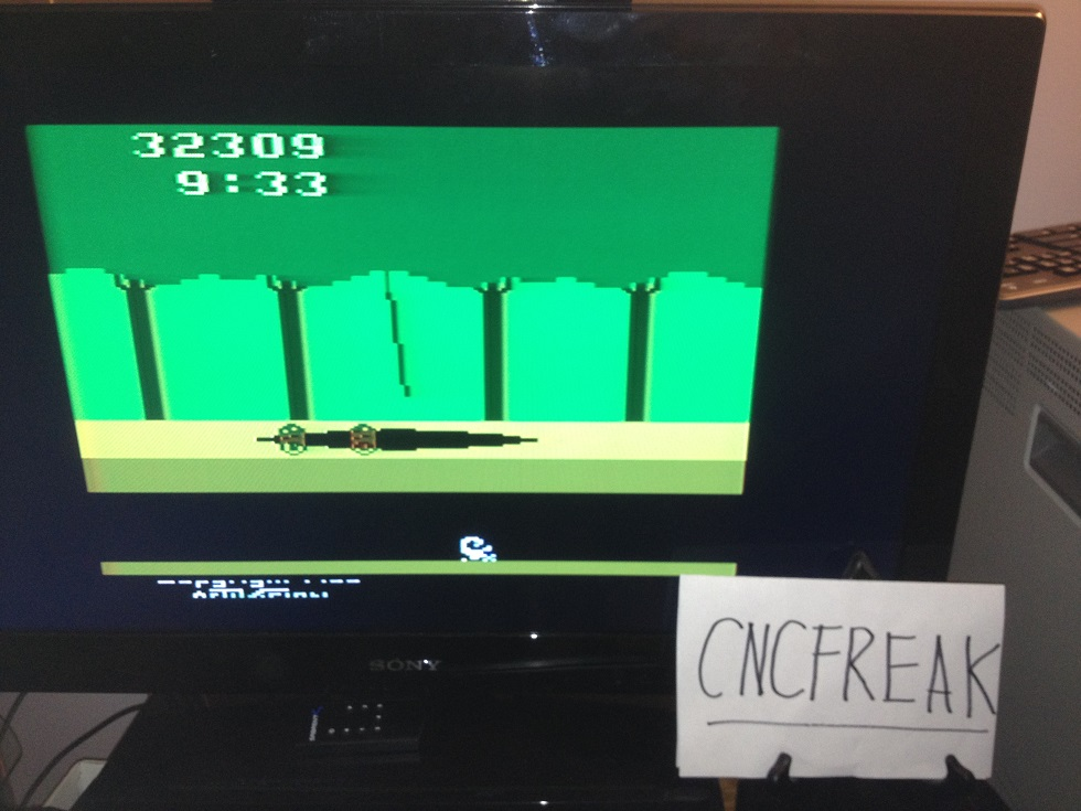 Pitfall! 32,309 points