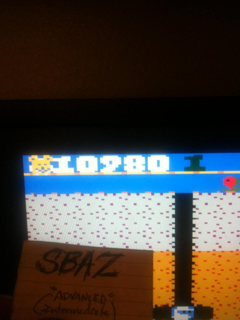 Dig Dug: Teddy Bear 110,980 points