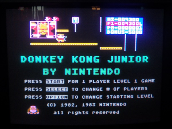 Donkey Kong Junior 9,300 points