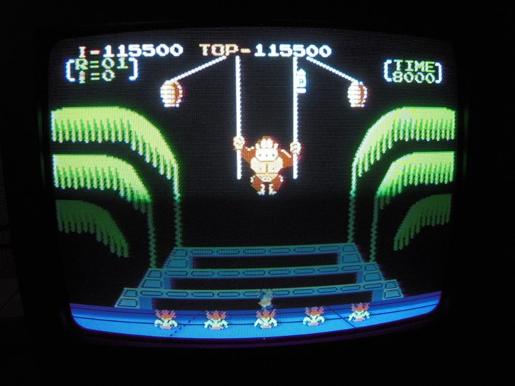 Donkey Kong 3: Game A 115,500 points