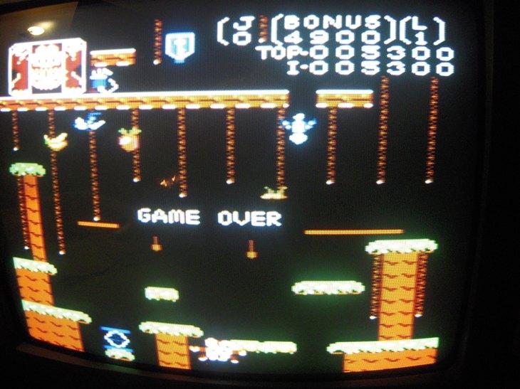 Donkey Kong Jr: Standard 5,300 points