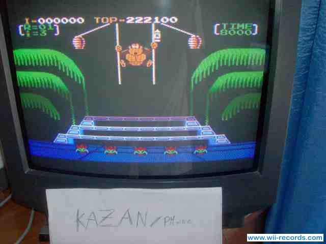 Donkey Kong 3 222,100 points