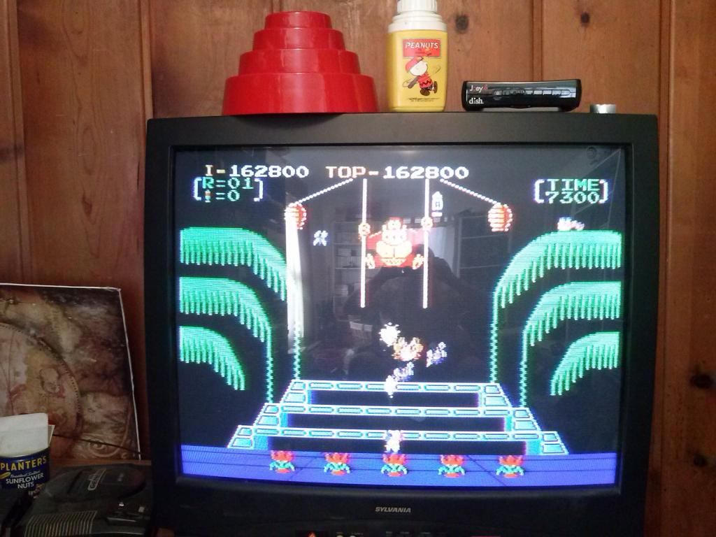 Donkey Kong 3: Game A 162,800 points