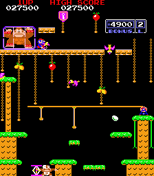 Donkey Kong Jr 27,500 points