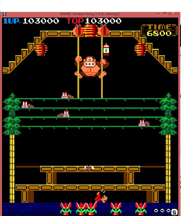 Donkey Kong 3 103,000 points