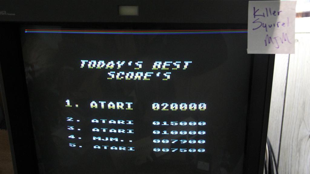 killersquirel: Tiger Attack (Atari 400/800/XL/XE) 7,900 points on 2013-09-25 21:58:33