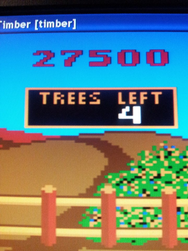 muscleandfitness: Timber (Arcade Emulated / M.A.M.E.) 27,500 points on 2014-04-28 08:18:15