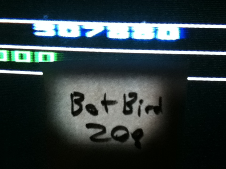 Botbird208: Bump N Jump (Atari 2600) 307,880 points on 2014-05-03 13:01:12