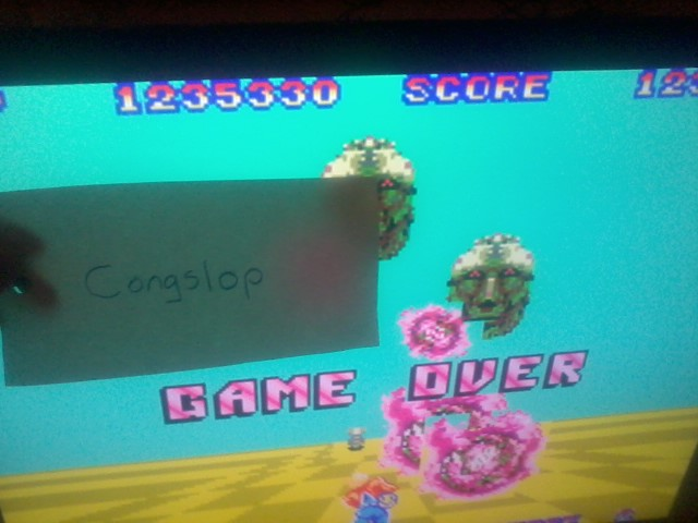 Space Harrier 1,235,330 points