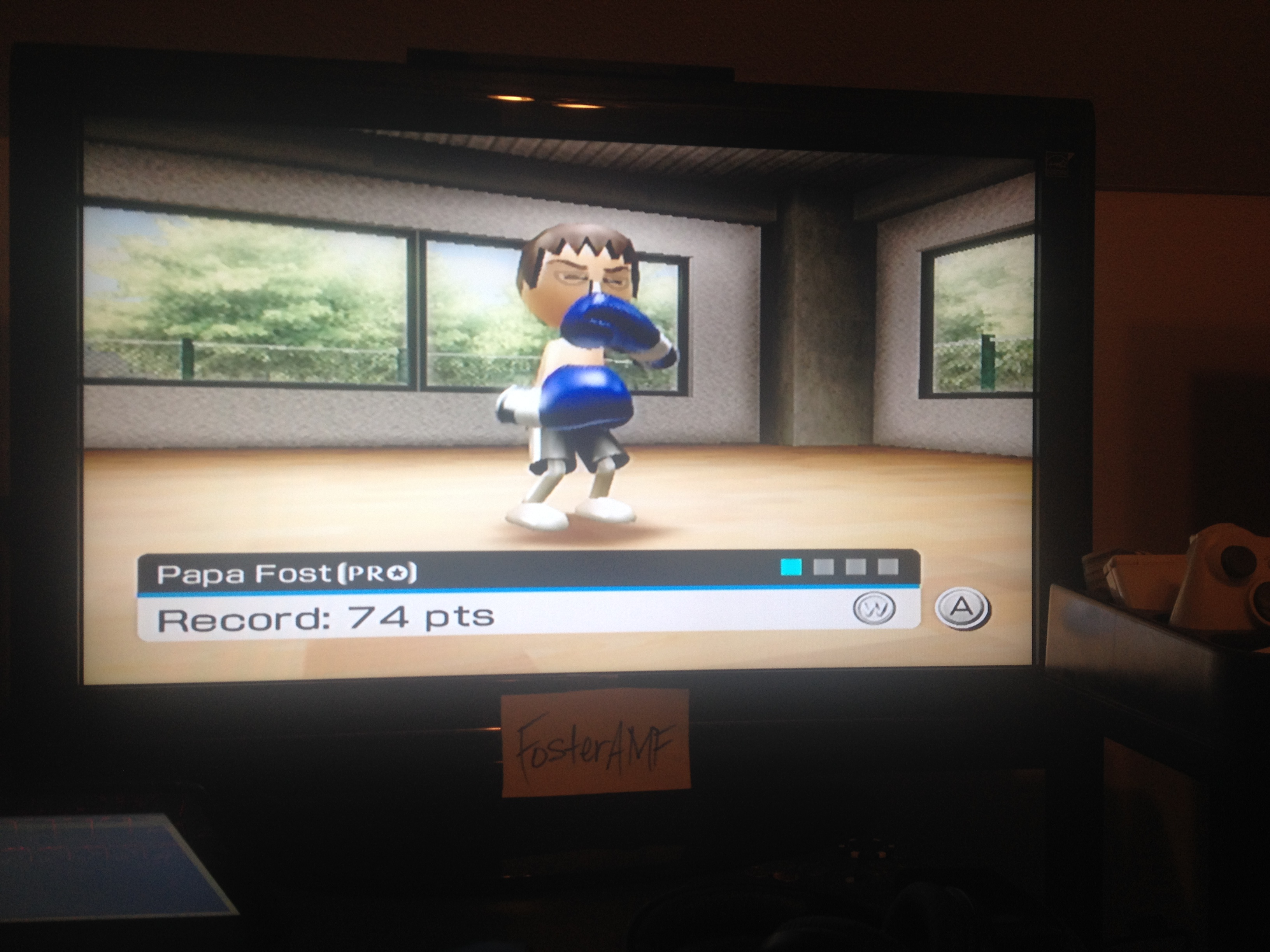 FosterAMF: Wii Sports: Boxing [Dodging] (Wii) 74 points on 2014-05-14 14:24:53