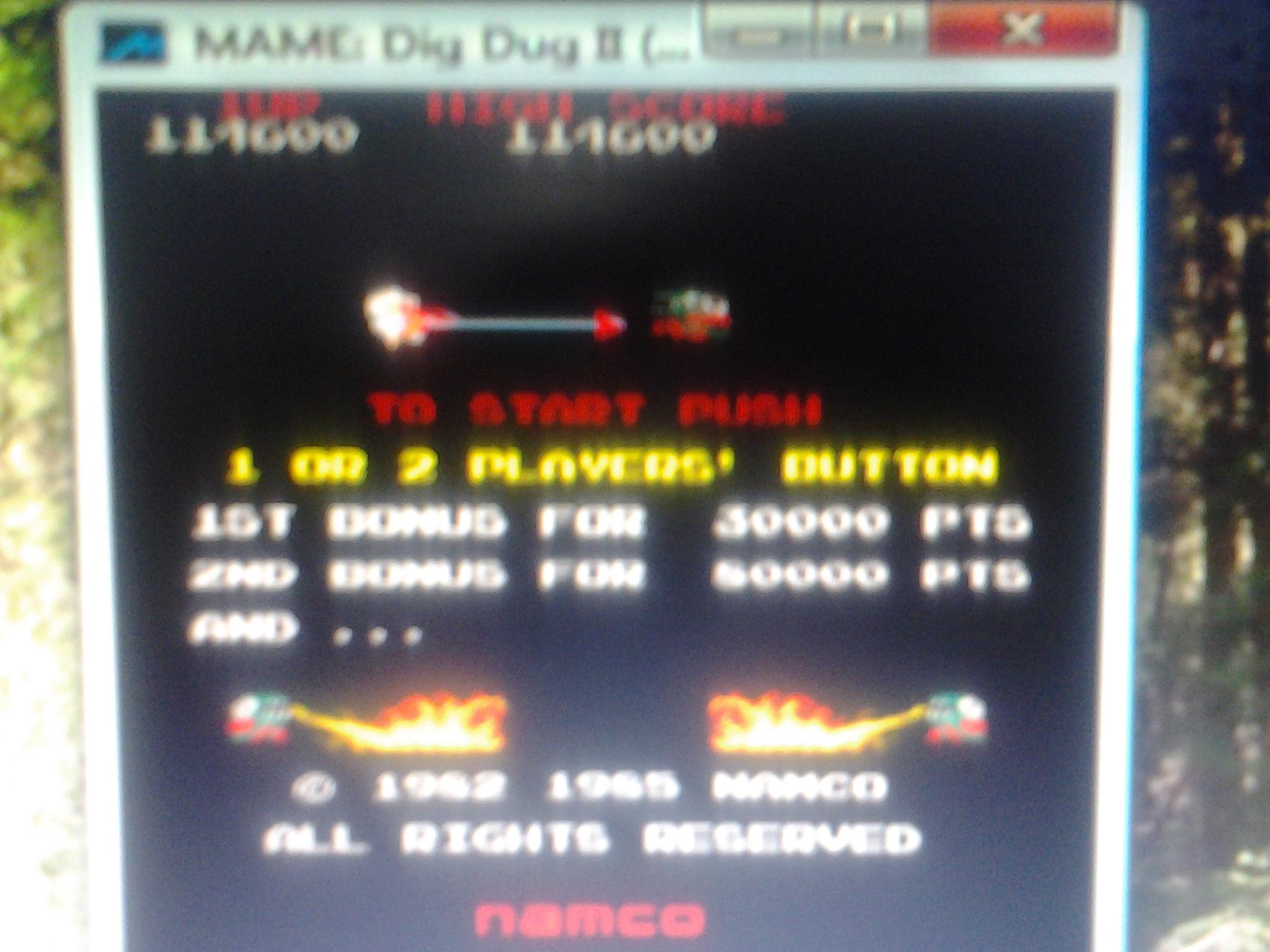 Dig Dug II 114,600 points