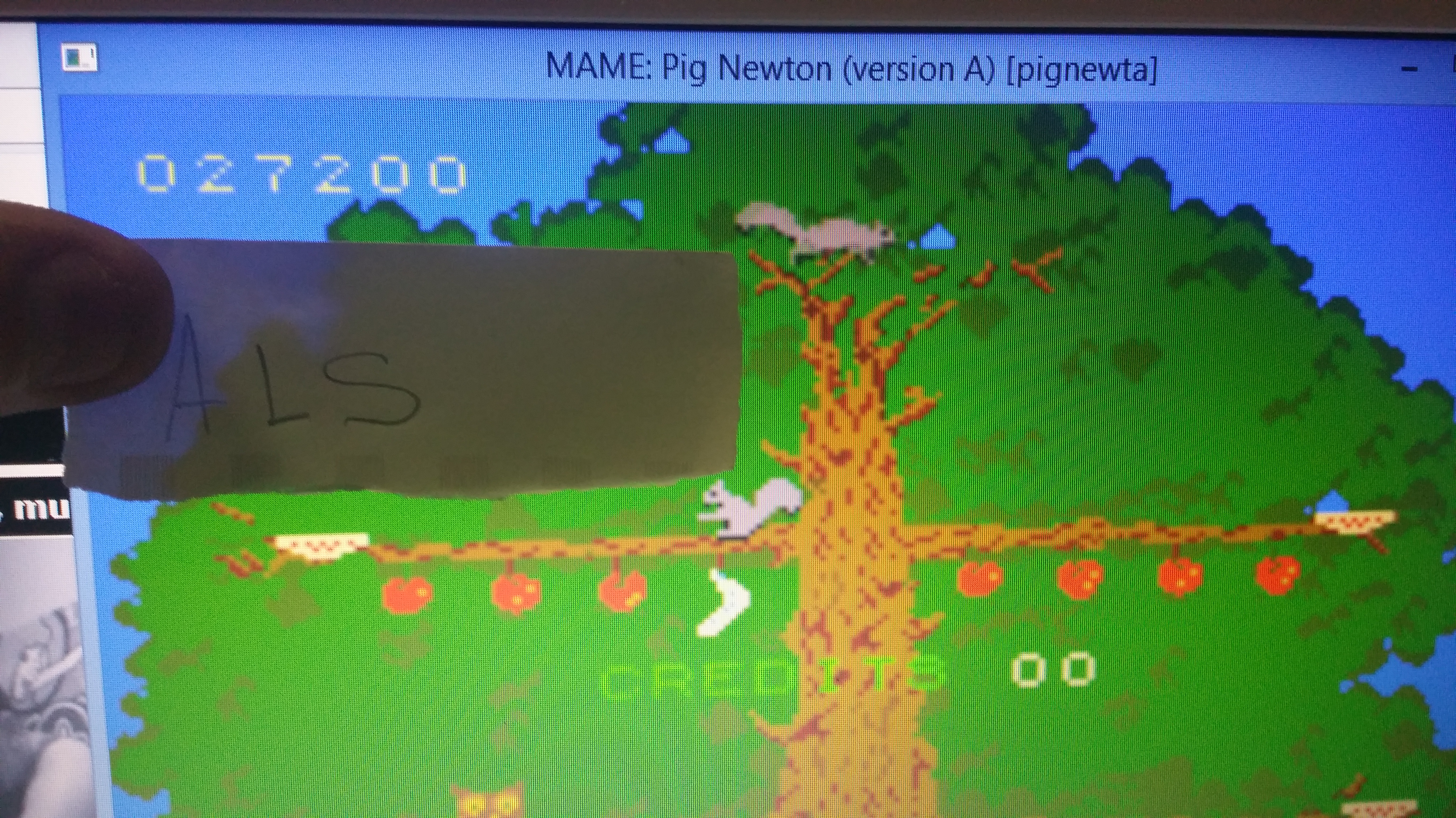 muscleandfitness: Pig Newton [pignewt] (Arcade Emulated / M.A.M.E.) 27,200 points on 2014-05-24 04:58:44