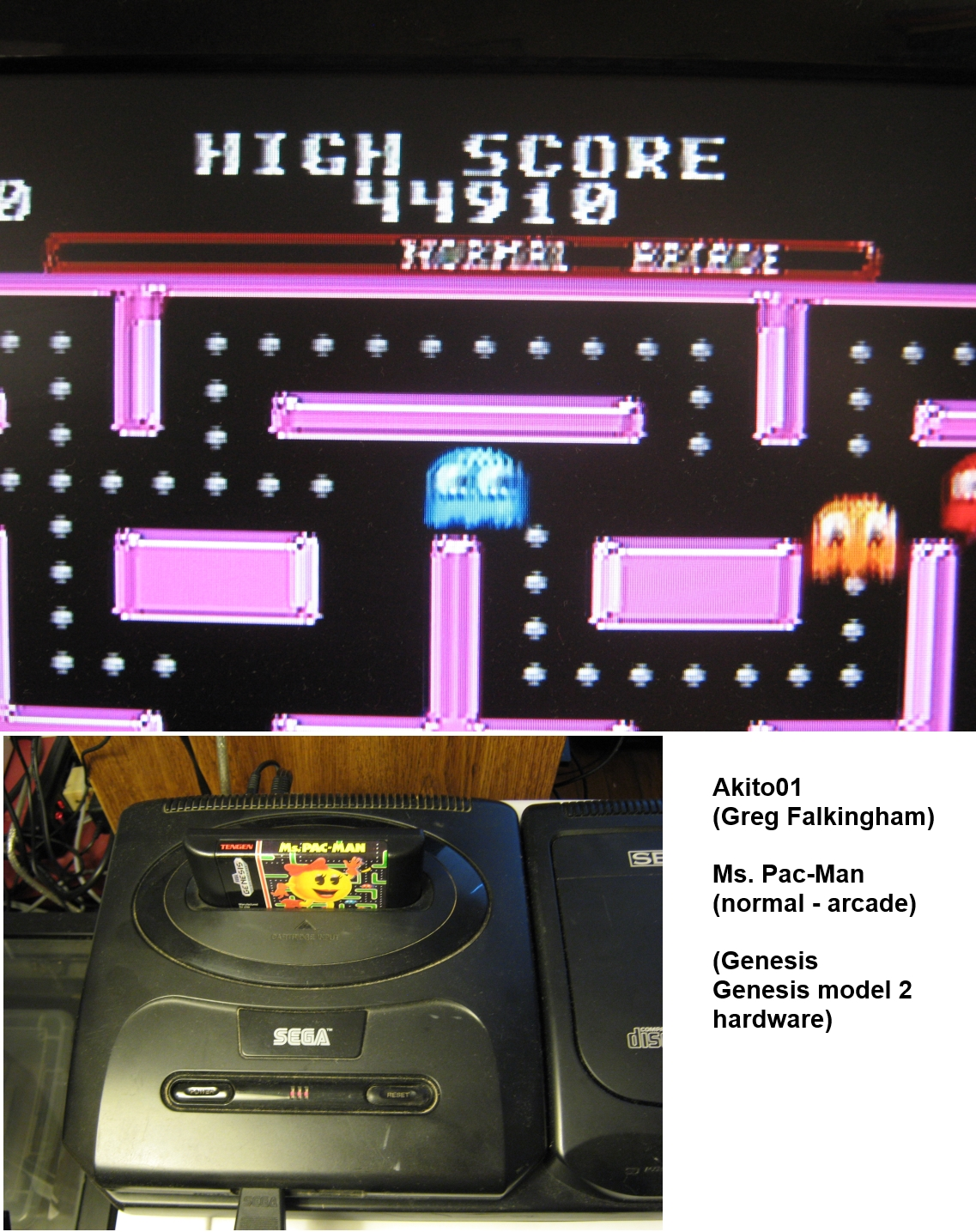 Ms. Pac-Man 44,910 points